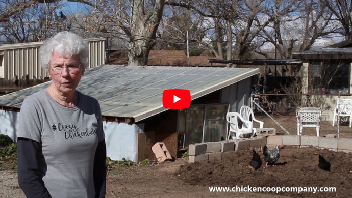 How Do Chickens Help Enhance Your Compost Pile?