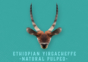 Ethiopian Yirgacheffe -NATURAL PULPED-