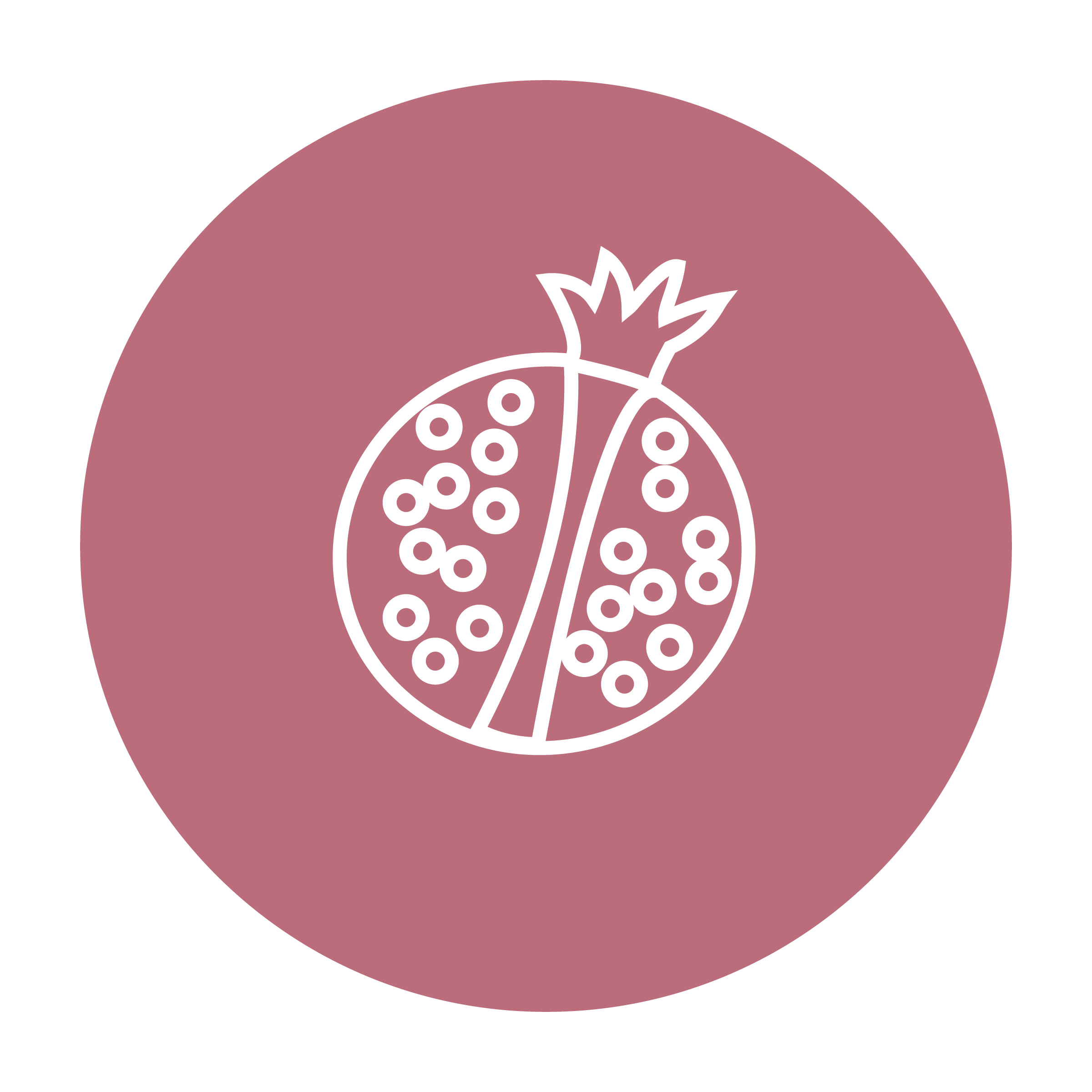 Pomegranate Seed Oil Icon