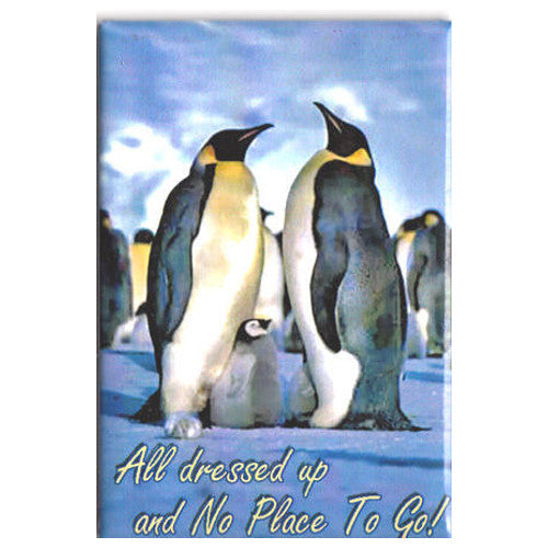 All Dressed Up Penguin Magnet