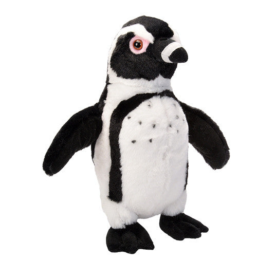 "Black-Foot Penguin Plush ( 12"" Tall)"