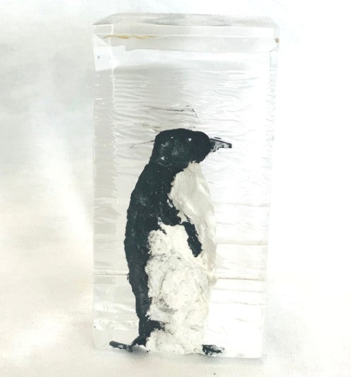 "Penguin Carved into Lucite Ice Block (4"" Tall)"