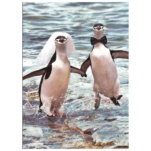 Penguin Bride and Groom Wedding Card
