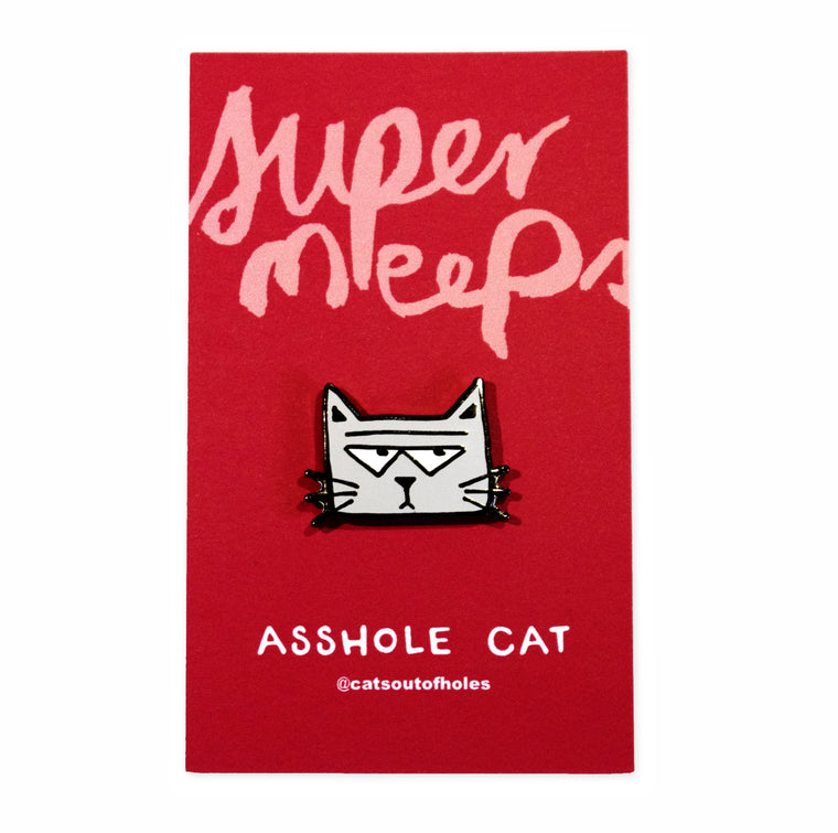 Asshole Cat Pin