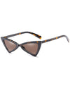 Retro Triangle 90s Cat Eye Sunglasses