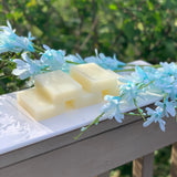 Fragrance Free Breast Milk Soap Bar