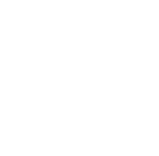 The Generous Light Co.