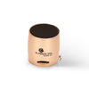 Kratos Bluetooth Nano Speaker (Gold)