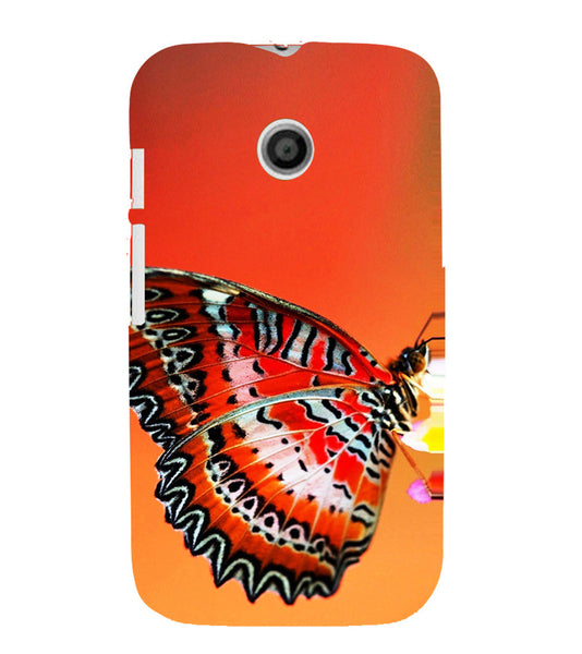 EPICCASE Butterfly in wild Back Case Cover for Moto E
