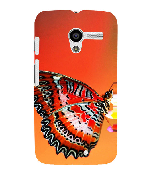 EPICCASE Butterfly in wild Back Case Cover for Moto X