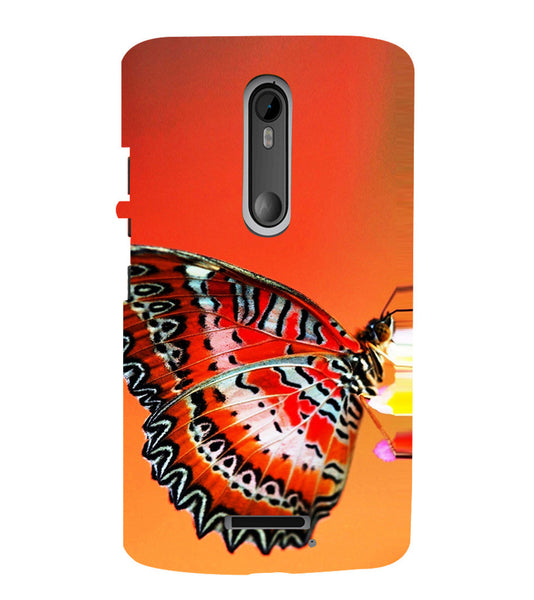 EPICCASE Butterfly in wild Back Case Cover for Moto X3