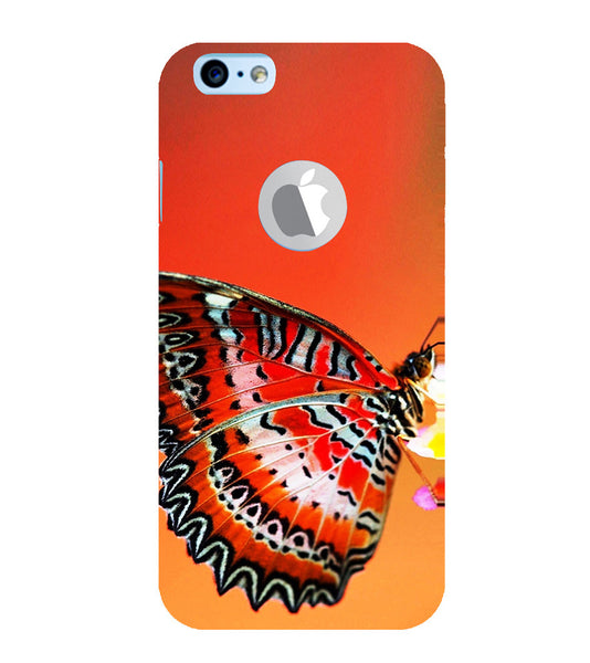 EPICCASE Butterfly in wild Back Case Cover for Apple iPhone 6plus/6splus