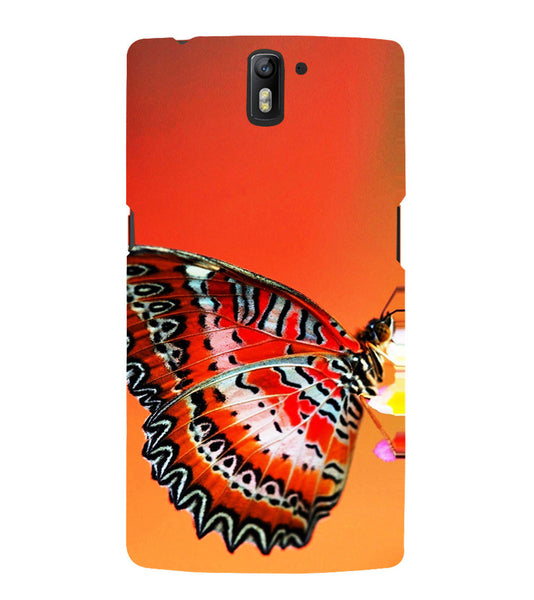 EPICCASE Butterfly in wild Back Case Cover for Oneplus One