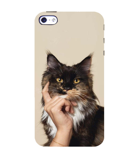 EPICCASE cat case Back Case Cover for Apple iPhone 4