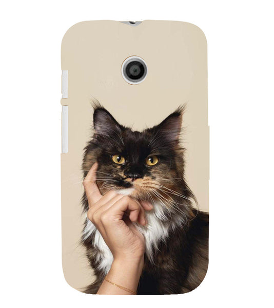 EPICCASE cat case Back Case Cover for Moto E