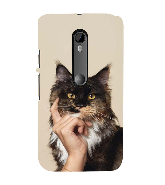 EPICCASE cat case Back Case Cover for Moto X Play