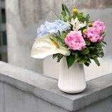 succulent plants | BYDEAU | flower delivery Hong Kong