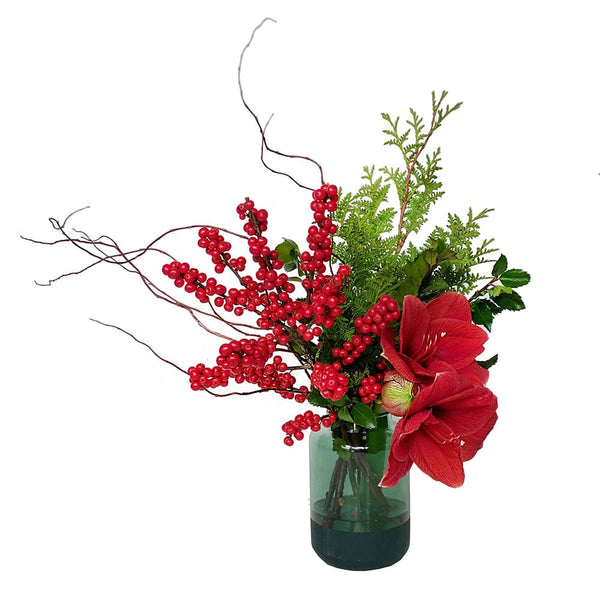 The Elves | Red Amaryllis Christmas Flower Arrangement | BYDEAU