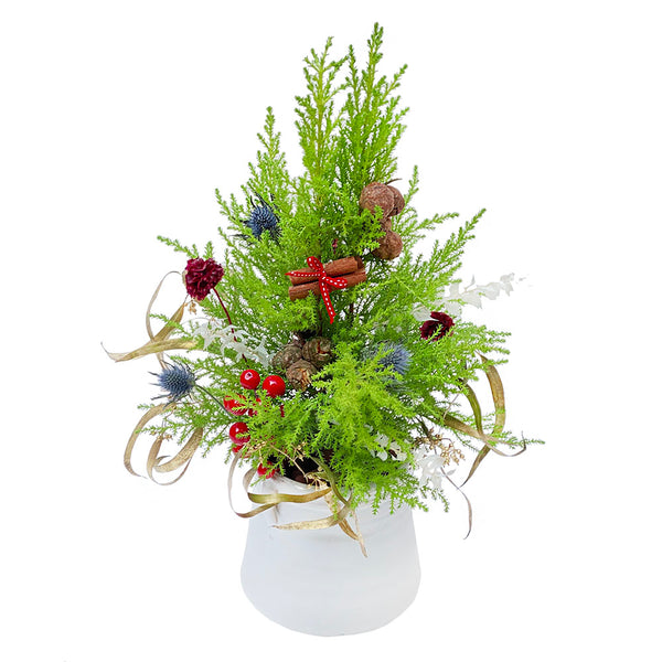 The Tidings | Mini Christmas Tree for Tabletop | BYDEAU
