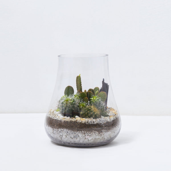 succulent terrariums hong kong Vase Arrangement - The Burt