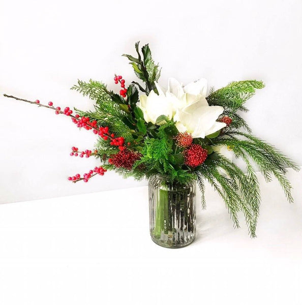 Amaryllis Flower arrangement in a vase for Christmas The Merry