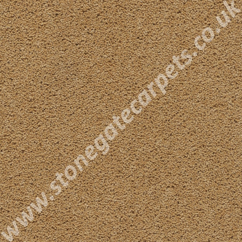 Axminster Carpets Devonia Plain Sunkissed Carpet 396/76000