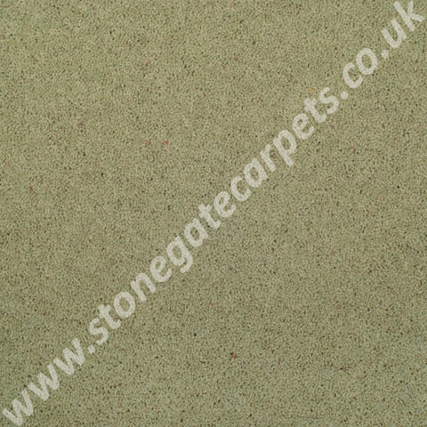 Axminster Carpets Devonia Plain Water Reed Carpet 1307/76000