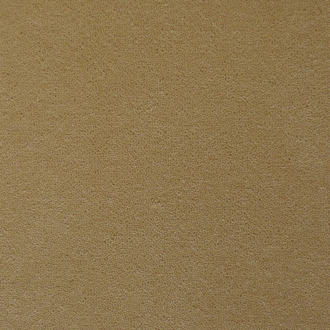 Brintons Carpets Finepoint Leighton Canvas Carpet Remnant F392