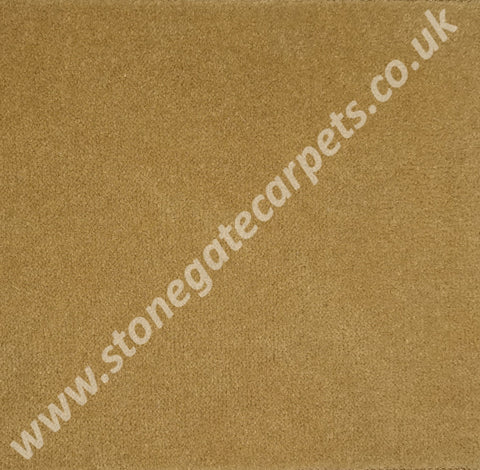 Ulster Carpets Ulster Velvet Honey Gold W8618 Carpet Remnant - Less than Retail (Call for Price)