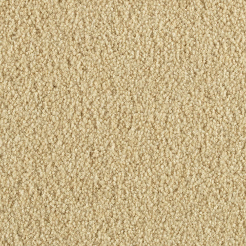 Penthouse Carpets Esprit Polaris 10101
