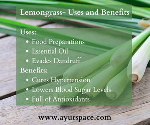 Lemongrass- Uses and Benefits