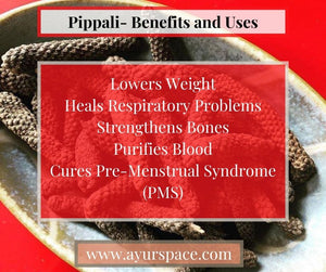 Pippali- Benefits, and Uses