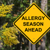 Say Goodbye to Allergies - 8 Effective Ayurvedic Treatment for Allergy