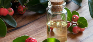 Wintergreen Oil: 20 Amazing Benefits, Uses and Recepies