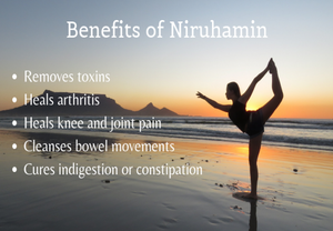 What is Aasthaapana or Niruhamin in Ayurveda? What are its benefits?