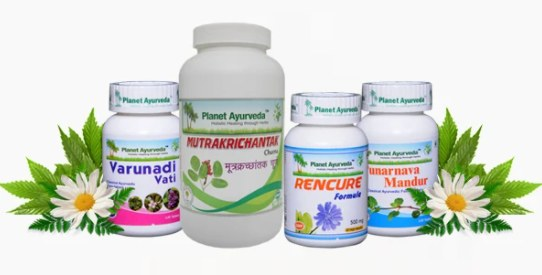 Planet Ayurveda Kidney Revive Pack Combo