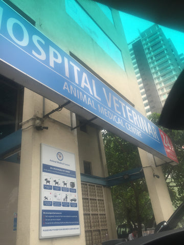 Animal Medical Hospital Entrance