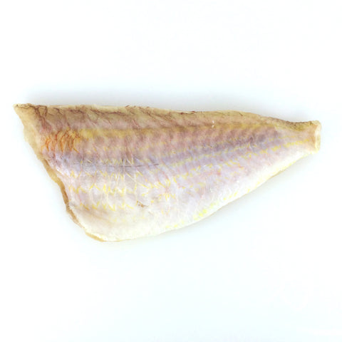 Golden Threadfin Bream (Itoyoridai) - イトヨリダイ - Kurisi