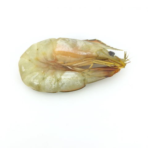 Natural White Shrimp (Ten'nen Ebi Howaito) - 天然エビ ホワイト