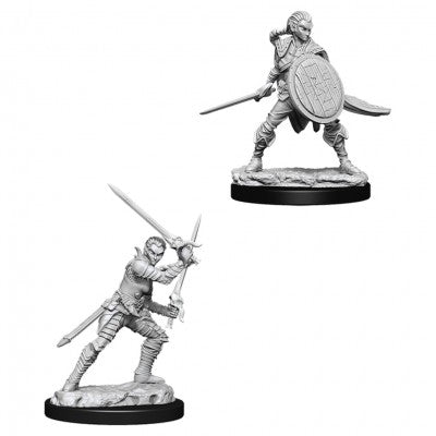 WZK73410 Elf Female Fighter