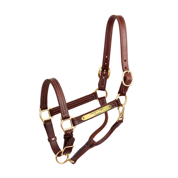 Premium Leather Show Halter with Plate