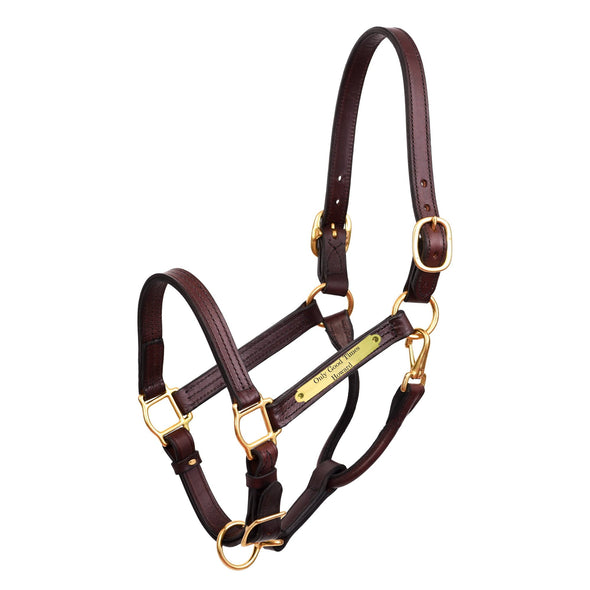 Leather Show Halter with Plate - Equestrian Chic Boutique