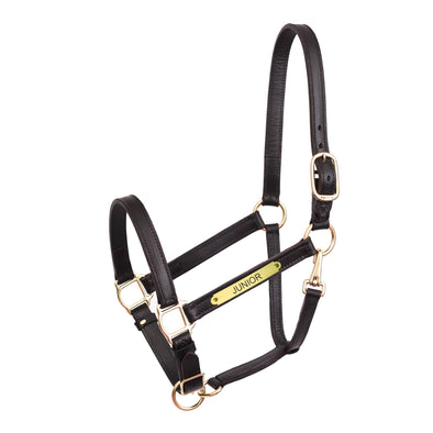"1"" Leather Turnout Halter with Plate - Equestrian Chic Boutique"