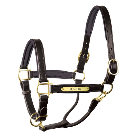 "1"" Leather Turnout Halter with Plate"