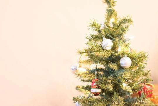 Sustainability During The Holidays | With Love Darling
