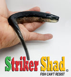 STRIKER SHAD