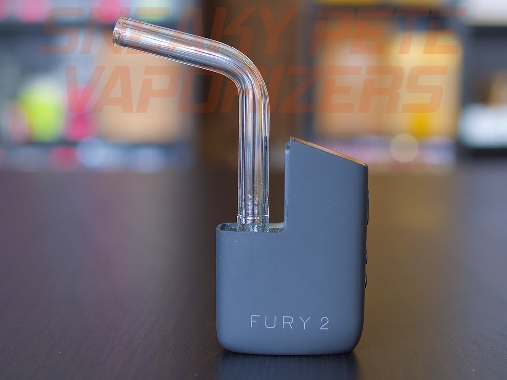 Healthy Rips Fury 2 Glass Mouthpiece,Glass - www.sneakypetestore.com