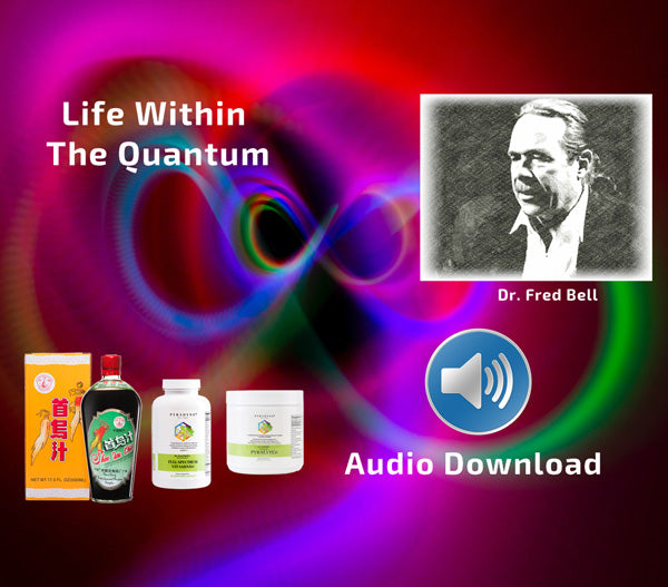 Life Within The Quantum Seminar - Audio Download - Pyradyne