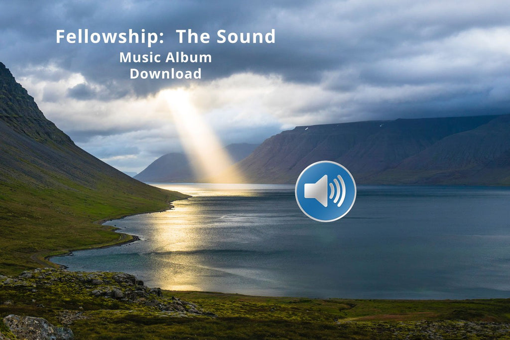 The Fellowship Album Download - Pyradyne