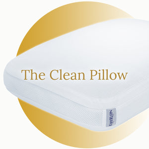 The Clean Pillow